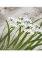 Vitale Bitki Desen Ahşap Tablo Renkli